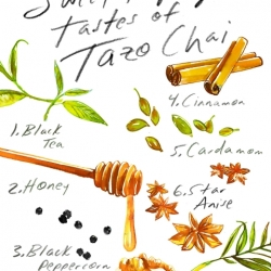 Anatomy of Tazo Chai REVISED