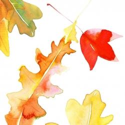 leaves-postcard4-731x1024